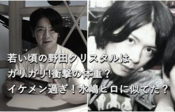 野田クリスタルの若い頃イケメンでガリガリ