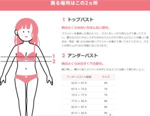胸のカップ数・ブラジャーサイズ計算方法