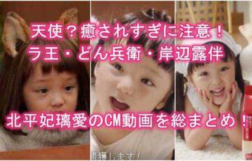 北平妃璃愛のCM動画・ラ王・どん兵衛・岸辺露伴