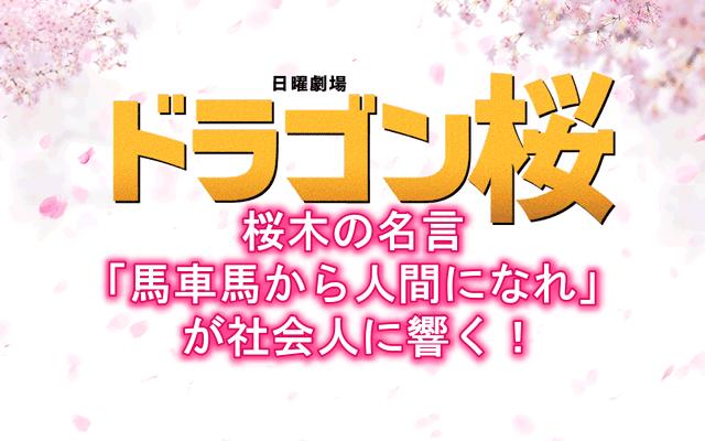 ドラマ「ドラゴン桜」「ドラゴン桜2」馬車馬の名言