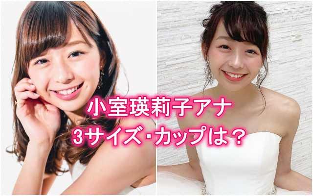 小室瑛莉子の胸のカップ、カップサイズ、3サイズ、バストサイズ、ミスコン、ニット